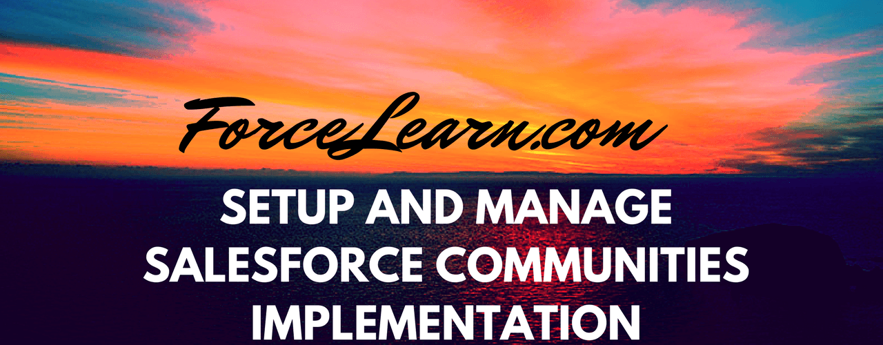 Setup Salesforce Communities Implementation